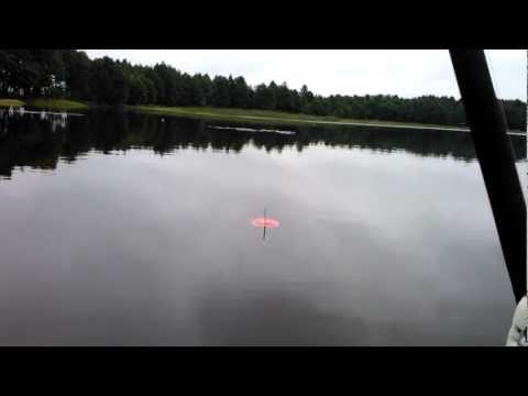 рыбалка в брестской области на щуку видео