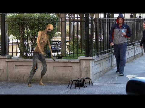 Big Spider In The City Prank