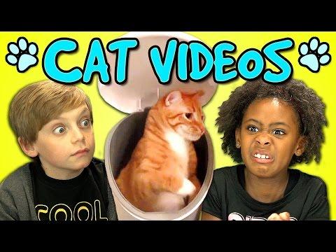 KIDS REACT TO CAT VIDEOS