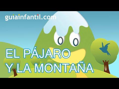 El pájaro y la montaña - Cuento infantil - Cuentacuentos