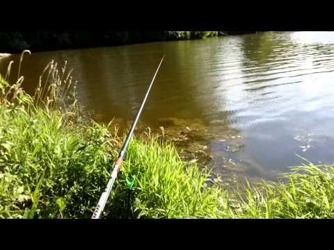 как ловить рыбу на геркулес