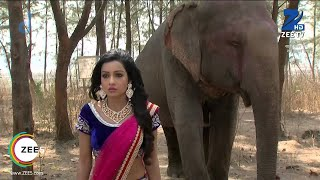 Bandhan Saari Umar Humein Sang Rehna Hai - Episode 123 - February 26, 2015 - Best Scene - ZEETV