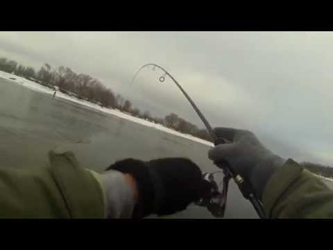 отчеты о рыбалке на наркомводе