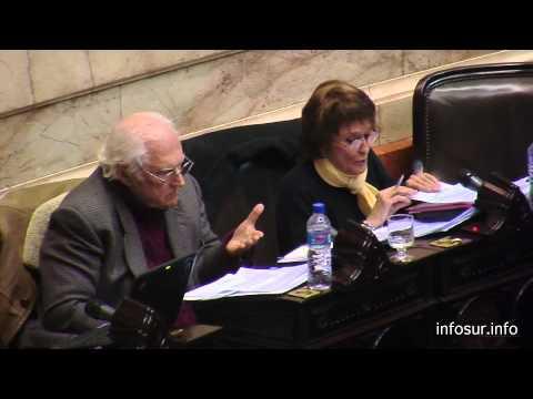 Argumedo/ Solanas - una profunda crítica al presupuesto 2014