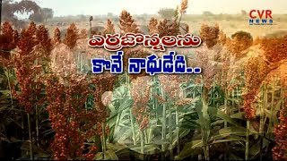 Erra Jonna Farmers Protest For Minimum Support Price At Nizamabad | CVR News - CVRNEWSOFFICIAL