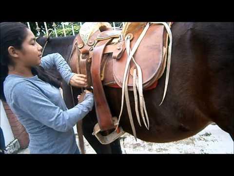 Ensillar y montar caballos.