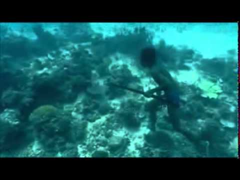 Bajau Laut Freediving
