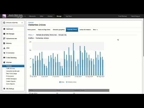 Reportes y Analytics - Arpón Web Suite