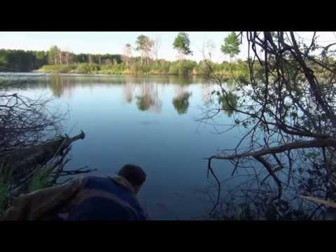 где искать карася на озере летом