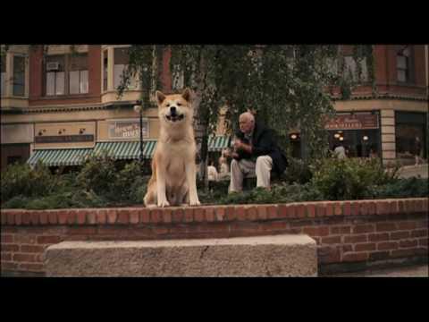 Video: Šuo visą laiką bus mūsų ištikimiausias draugas. -