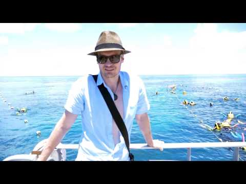 Happy New Year 2017 - from The Great Barrier Reef (Michael Sealey Hypnosis & Meditation channel)