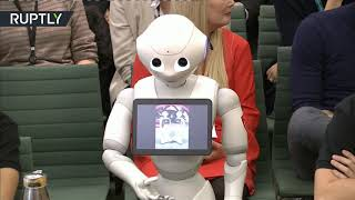 Future is here & its name is Pepper! - RUSSIATODAY