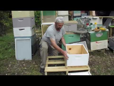 TOP BOTTOM Combination Board Beehive Equipment Beekeeping Honey Bee Hive, Georgia Beekeeper John Plu