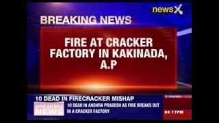 10 killed in cracker factory in Andhra Pradesh - NEWSXLIVE