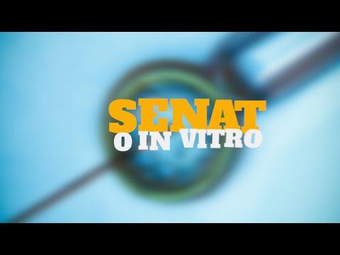 Senatorowie o in vitro