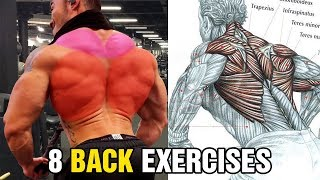 8 Exercises To Build A Big Back8 Exercises To Build A Big Back