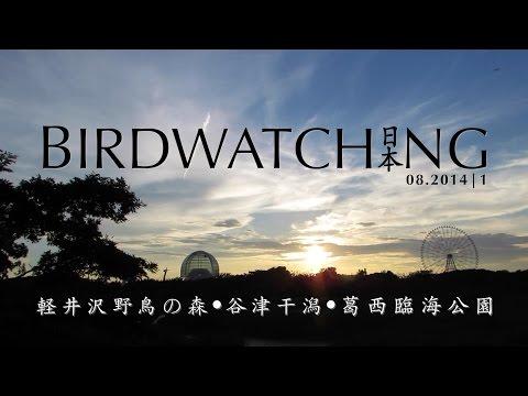 birdwatching [01. Nagano, Chiba, Tokyo] :: Japan | 2014