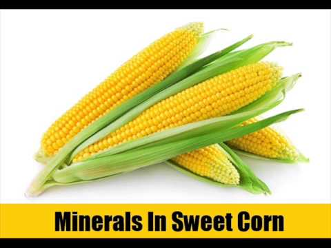 Why Should You Take Sweet Corn Regularly