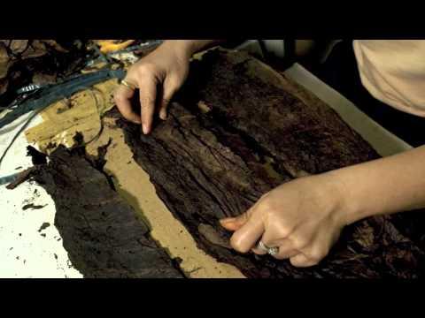 How To Make A Hula Girl Cigar