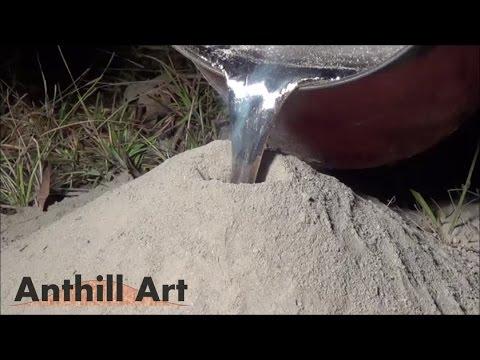 Tiraron aluminio fundido en un hormiguero