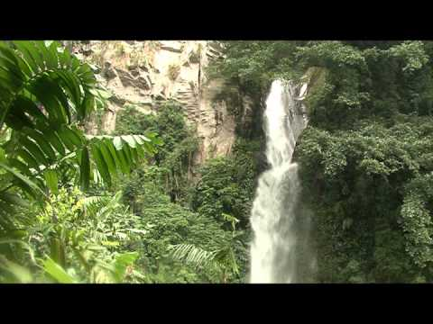 Proyecto Tacaná de la UICN - Logros - 2011