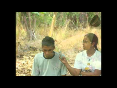 Helong (Semau) - Interview
