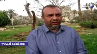 بالفيديو.. سكان 'مصر الجديدة': أشجار 'الميرلاند' يتم قطعها ولا تنقل وننتظر حلولا من وزير البيئة