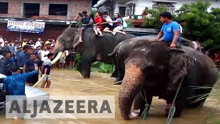 Elephants helped rescue 600 people from floods in Nepal - ALJAZEERAENGLISH