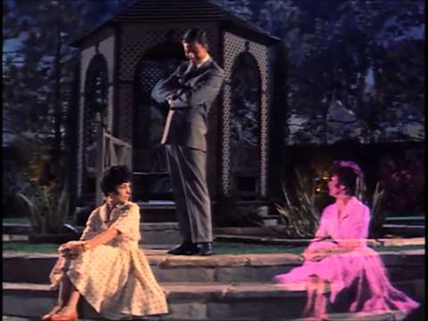 Put On A Happy Face- Dick Van Dyke & Janet Leigh