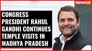Congress President Rahul Gandhi continues temple visits in MP - NEWSXLIVE