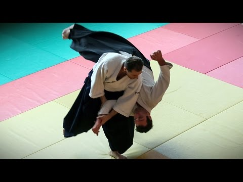 Aikido - Guillaume Erard seminar in Bayonne (June 2016)
