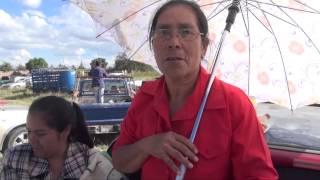 Saludos en San Jerónimo (Guadalupe, Zacatecas)