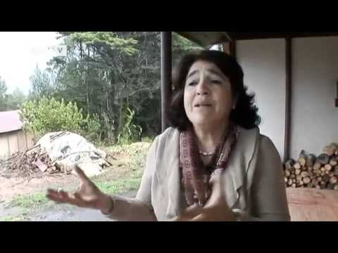 Social Entrepreneur: Ver&#65533;_nica Abud from Chile | Global 3000