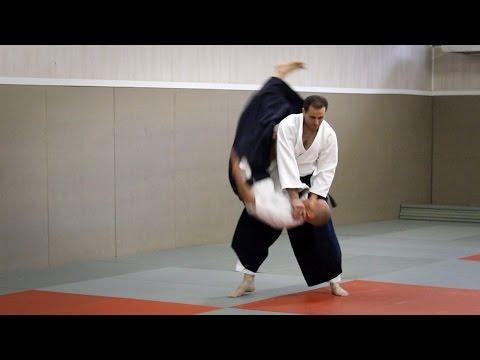 Aikido - Guillaume Erard seminar at the Cercle Christian Tissier (June 2016)
