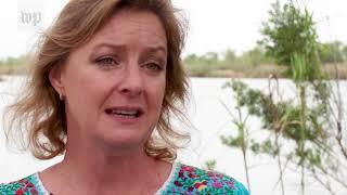 'It's just politics': National Butterfly Center fights border wall construction - WASHINGTONPOST
