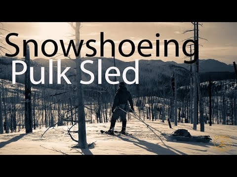 Winter Snowshoeing with DIY Pulk Sleds in the Cascade Mountains