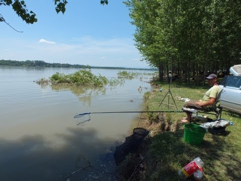 Danube Feeder fishing - Pescuit la feeder pe Dunare