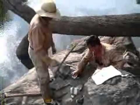 Trailer Sumaúma 2008