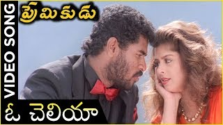 Oh Cheliya Naa Priya Sakhiya Video Song | Premikudu Movie Songs | Prabhu Deva, Nagma - RAJSHRITELUGU