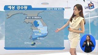 [날씨정보] 06월 29일 11시 발표_수화방송