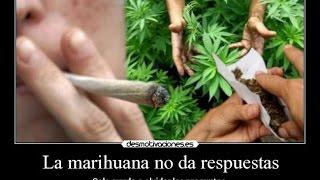 Marihuana=Psicosis, esquizofrenia y cambios del carácter