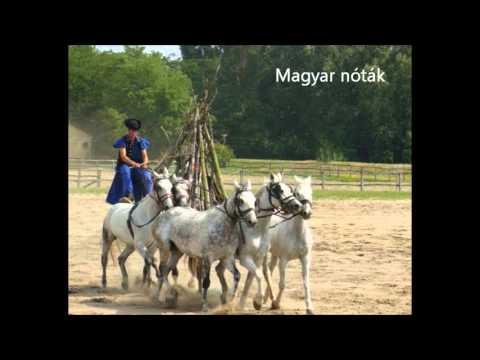 Magyar nóták - Traditional Hungarian melodies