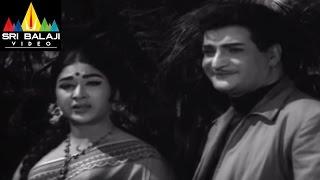 Jeevitha Chakram Movie NTR and Vanisri at Park Scene || NTR, Vanisri, Sharada - SRIBALAJIMOVIES
