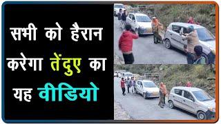 video : Kullu की Road पर निकला Leopard, लोगों संग खेलता आया नजर