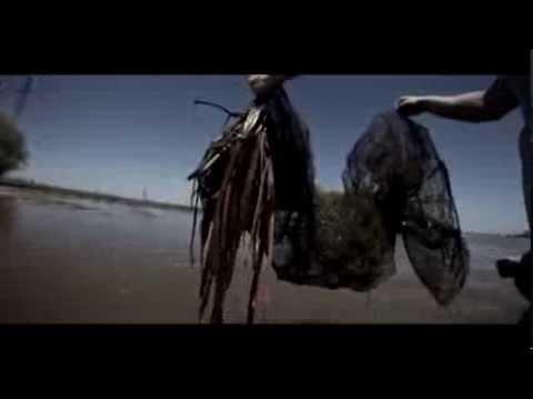 видео как ловят браконьеров в астрахани видео