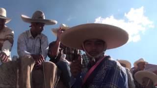 Saludos en El Salitrillo (Tepetongo, Zacatecas)