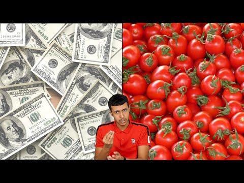 محسن من البيت | الوضع طماطم 🍅