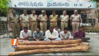 Police Arrest 7Red Sandalwood Smugglers In Kadapa | iNews - INEWS
