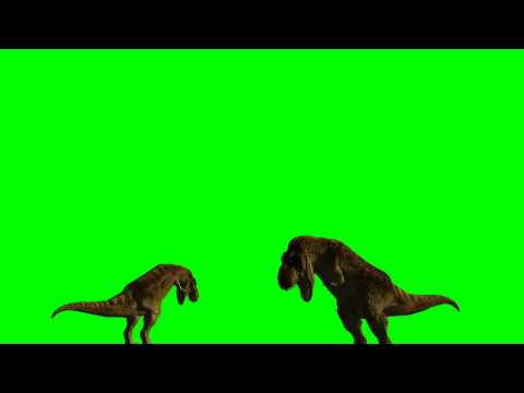 T-Rex Dinosaurs eat -  green screen effects