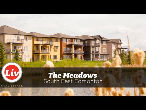 Liv in The Meadows, Edmonton - A neighbourhood tour